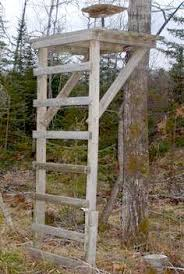 Scentite Blinds Free Deer Hunting Stand Plans Hunting Tips Shooting House