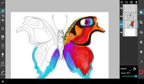 step by step tutorial on how to draw a butterfly create