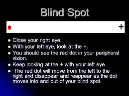 Blind Spot Left Eye The Entire Range Of All The Various Kinds Of Radiation Light Or