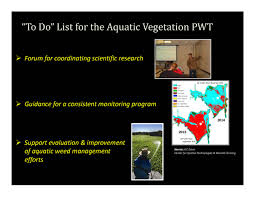programs natural resources weeds and delta stewardship council update on the science and management of