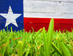 Guadalupe Flag Index Of Wp Content Uploads Texas Flag Wallpapers