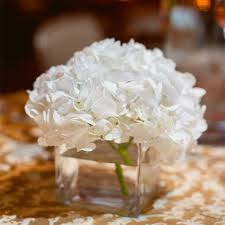 hydrangea centerpieces white hydrangea centerpiece wedding flowers white