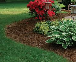 Best Type Of Mulch For Vegetable Garden - use mulch to manage your soil conditions fine gardening