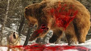 top animals hunt animal hunting in amazon animal hunting and