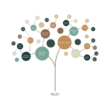 personalized family tree pedigreeable