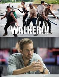 Walker Meme - the walking dead paul walker memes of the walking dead the