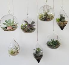 the 25 best hanging terrarium ideas on pinterest copper decor