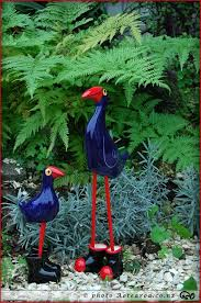 9 best pukeko and pohutukawa images on cottage gardens