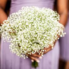 baby s breath bouquets a simple yet classic bridesmaid bouquet of baby s breath brides