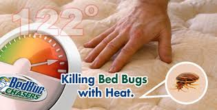Can Bed Bugs Kill You Bedbug Chasers Bed Bug Heat Treatment Killing Bed Bugs With Heat