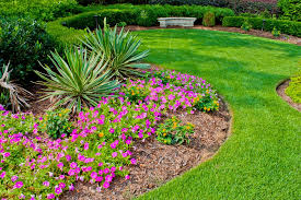 easy landscaping ideas for your back and front yard front yard