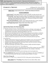 Sample Resume For Sales by Sample Resume For A Sales Position Dummies