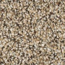 Lowes Indoor Outdoor Rugs by Shop Carpet At Lowes Com