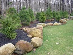 Large Pebbles For Garden Beach by Best 25 Rocks In Landscaping Ideas On Pinterest Landscape Stone