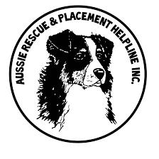 australian shepherd 200 aussie rescue u0026 placement helpline