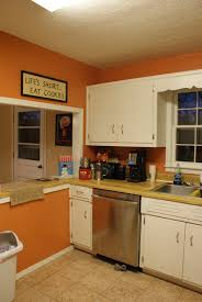 Kitchen Paint Ideas With White Cabinets Orange Kitchen Walls Ideas Nurani Org