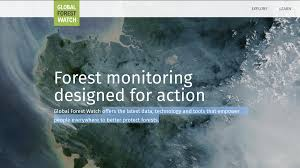 Interactive Map Global Forest Watch by A Data Journalist U0027s Microguide To Environmental Data
