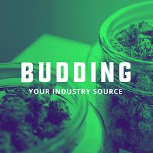 jobs cannabisjobs us