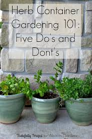 Herb Container Garden - 5 dos and don u0027ts for planting herbs western garden centers