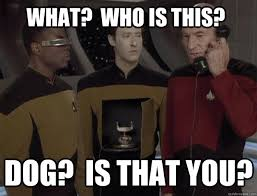 Dog Phone Meme - image 225239 yes this is dog know your meme