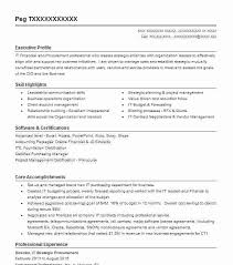 executive director resume here are director of it resume director it strategic procurement