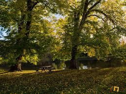 Kyneton Botanical Gardens Autumn In Malmsbury Botanic Gardens Melbourne