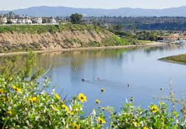 hotels near upper newport bay newport beach marriott hotel
