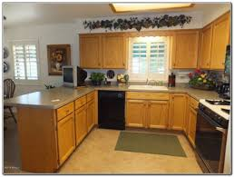 Discount Kitchen Cabinets Los Angeles by Cheap Kitchen Cabinets Ideas Kitchen Home Design Ideas