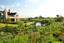 landscaping sa garden and home