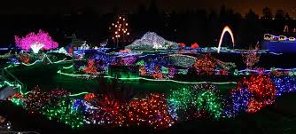 Phoenix Zoo Lights best 25 zoo lights ideas only on pinterest holiday zoo