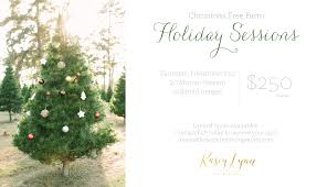 christmas tree farm holiday mini sessions kasey lynn