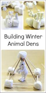 engineering project for kids dens for winter animals