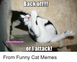 Cats Memes - back off funnycatmemesxyz or attack from funny cat memes meme