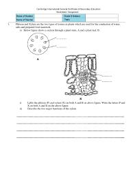 transpiration worksheet defendusinbattleblog
