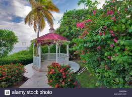 gazebo with flowers in garden at marriott hotel st thomas us