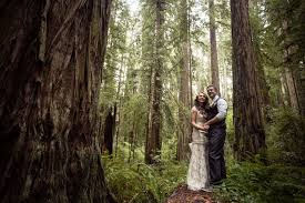 free wedding venues in oregon cecilia and craig s california redwood forest wedding