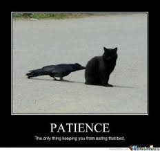 Patient Meme - patience by urutorasebun meme center