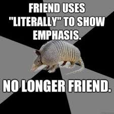 Armadillo Meme - pin by amy fetchko on school pinterest english