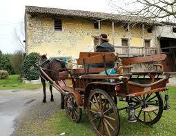 carrozze antiche carrozze cavalli 盪 antiche dimore a percoto ud sport cultura e