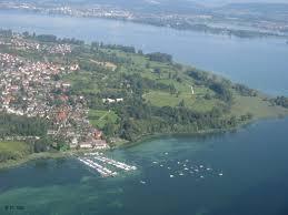 Amara Baden Baden Laufkäferkartierung Landkreis Konstanz