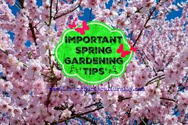 important spring gardening tips garden product reviews