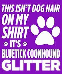 bluetick coonhound dander bluetick coonhound property laws u003c3 coon hunting pinterest