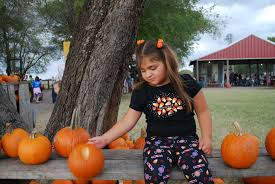 pick your own pumpkins in dallas fort worth