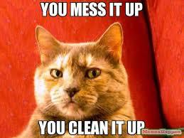 Clean Up Meme - you mess it up you clean it up meme suspicious cat 11066