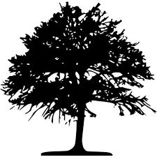 black tree 46 icon free black tree icons