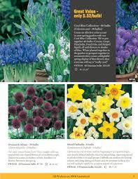 hovah seeds flower blub fundraiser
