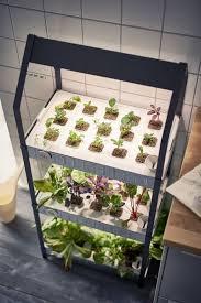 special hydroponic gardening kits aquarium indoor hydroponic