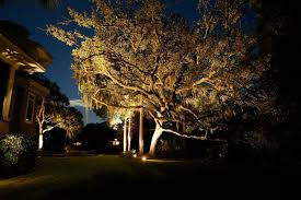 Landscape Tree Lights Outdoor Lighting Nitelites
