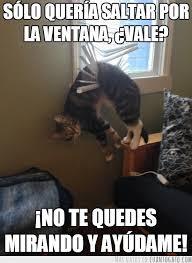 Memes Funny En Espaã Ol - humor en espa祓ol funny pinterest humor memes and chistes