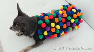 Candy Crush Halloween Costume Diy Candy Crush Dog Costume Irresistible Pets